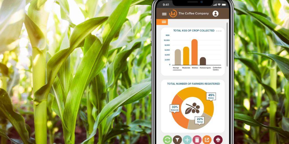Metajua agree supply chain web app design
